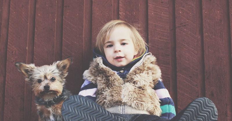 child-dog