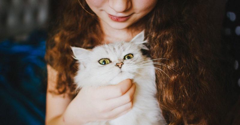 children-mourning-loss-of-cat