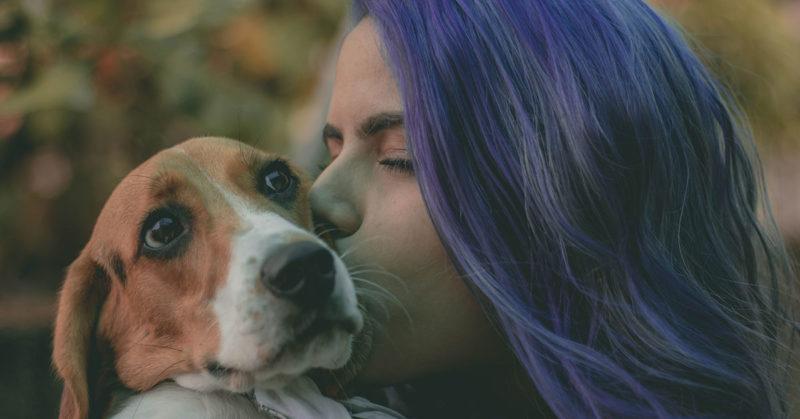Pet-Loss-Healing