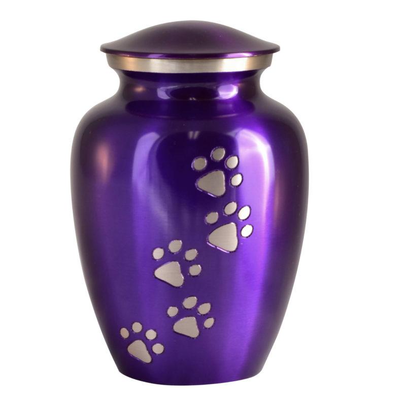 ottillie-violet_straight