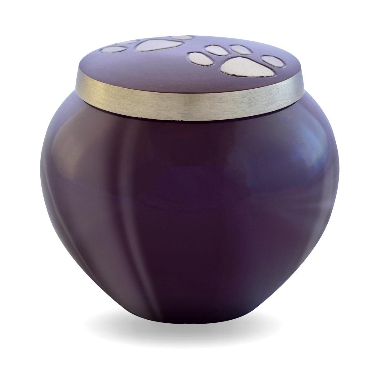 mia_purple_feature